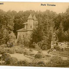 460 - Arges, PITESTI, park TRIVALE - old postcard - used - 1918 - Carte Postala Muntenia 1904-1918, Circulata, Printata