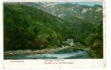 601 - Baile HERCULANE, Muntii Cernei - old  postcard - unused