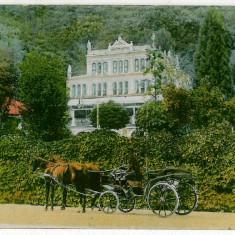 600 - Banat, Baile HERCULANE, carriage - old postcard - unused - Carte Postala Banat 1904-1918, Necirculata, Printata