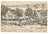485 - BUZIAS, Timis, Litho - old postcard - used - 1903, Circulata, Printata