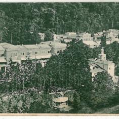 593 - Banat, Baile HERCULANE, Panorama - old postcard - used - 1908 - Carte Postala Banat 1904-1918, Circulata, Printata
