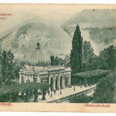 608 - Litho, Banat, HERCULANE, Railway Station - old postcard - used - 1902 - Carte Postala Banat pana la 1904, Circulata, Printata