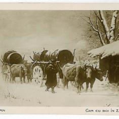 18 - Picture, Th. AMAN - Car cu boi in zapada - old postcard - unused