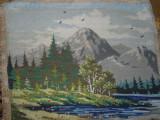 Peisaj de primavara