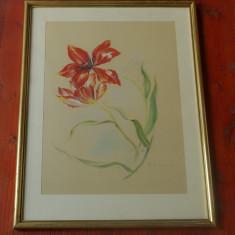 Tablou cu rama de lemn si sticla - Desen in pastel cretat motiv floral !!!! - Semnat - Tablou autor neidentificat