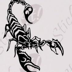 Tribal Scorpion_Sticker Auto_Perete_TRIB-046-Dimensiune: 35 cm. X 28 cm. - Orice culoare, Orice dimensiune