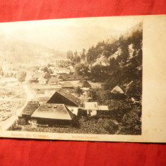 Ilustrata clasica - Salutari din Voineasa , inc.sec.XX