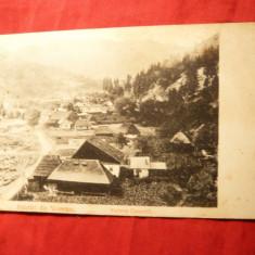 Ilustrata clasica - Salutari din Voineasa, inc.sec.XX - Carte Postala Oltenia pana la 1904