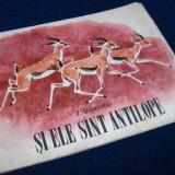 I. Akimuskin - Si ele sunt antilope - Carte educativa