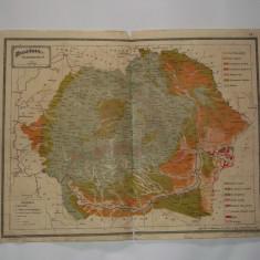 HARTA ROMANIEI INTERBELICA - AGRONOMICA