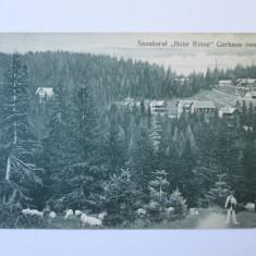 C.P.SANATORIUL MILITAR HOHE RINNE(PALTINIS) ANII 20 - Carte Postala Transilvania dupa 1918