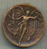 ATAM2001 MEDALIE 42  -PRIMUL RAZBOI MONDIAL 1914-1918 - GRECEASCA - AMERICA, BELGIA,, ITALIA, JAPONIA, RUSIA, ROMANIA, SERBIA... - starea care se vede