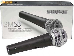 Microfon Studio Karaoke