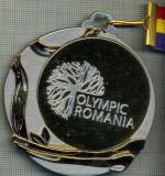ATAM2001 MEDALIE 144 - SPORTURI DE IARNA  - OLYMPIC ROMANIA -BRASOV 2013 - (AU PARTICIPAT TINERI INTRE 14 SI 18 ANI) - PANGLICA  -starea care se vede