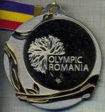 ATAM2001 MEDALIE 142 - SPORTURI DE IARNA  - OLYMPIC ROMANIA -BRASOV 2013 - (AU PARTICIPAT TINERI INTRE 14 SI 18 ANI) - PANGLICA  -starea care se vede