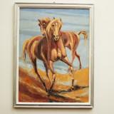 Pictura Virgil Salantiu Cai - Pictor roman, Animale, Acrilic