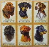 ROMANIA 2005 - CAINI DE RASA, 6 VALORI NEOBLITERATE - RO 0010