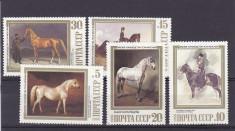 Fauna pictura ,cai,URSS. foto