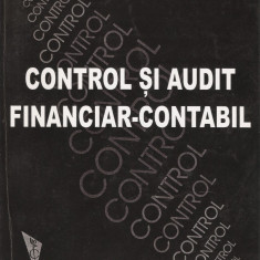 IOAN OPREAN - CONTROL SI AUDIT FINANCIAR CONTABIL { 2002, 304 p.}
