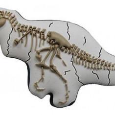 jibbitz CROCS - bijuterii/accesorii pentru saboti de guma - T-rex bones
