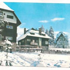 #carte postala(ilustrata)-PREDEAL -CIOPLEA-Peisaj de iarna