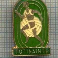 817 INSIGNA  - TOT INAINTE - PIONIERI -SPORTIVA -starea care se vede