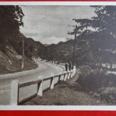 CP anii 50 - Calimanesti - Drumul spre Caciulata - 1213