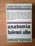 k2 Marcel Pop-Cornis - Anatomia balenei albe