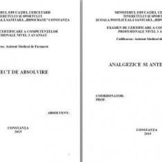 LUCRARE DE LICENTA A.M.F. - ANALGEZICE SI ANTIPIRETICE