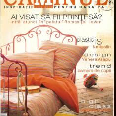 Revista CAMINUL, iunie 2005