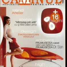 Revista CAMINUL, iulie 2005