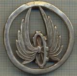980 INSIGNA VECHE - LEGIUNEA STRAINA -starea ce se vede