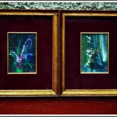 2 PICTURI CU FLORI DE CÂMP PE FOIȚĂ DE CUPRU, TABLOU RAME AURITE, SEMNATE G.D.B! - Pictor strain, Tempera, Miniatural
