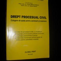 Drept procesual civil/culegere de spete pentru seminarii si examene-VIOREL MIHAI CIOBANU, GABRIEL BOROI, ADRIANA GASPAR, ION DRAGNE, TRAIAN BRICIU - Carte Drept procesual civil