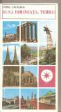 (C5072) BUNA DIMINEATA, TERRA! DE VIOREL SALAGEAN, EDITURA SPORT-TURISM, 1982, Alta editura