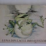 Luna din lacul broastelor - Erni Simmich / C42G - Carte de povesti