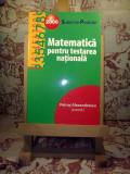 Petrus Alexandrescu - Matematica pentru testarea nationala