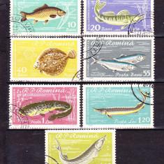 Timbre ROMANIA 1960/ LP.510 = PISCICULTURA, SERIE COMPLETA