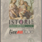 Manual de istorie, clasa a 9-a, a IX-a, autori Brezeanu Stelian - Manual scolar, Clasa 9