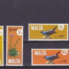 Flora -fauna ,Malta.