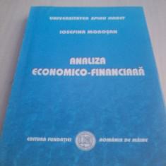 Analiza economico-financiara Iosefina Morosan