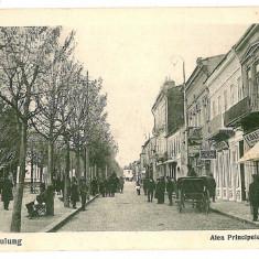 450 - Arges, CAMPULUNG, street prince Carol - old postcard - unused