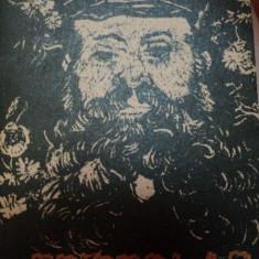 EPISTOLAR PREZENTAT SI INGRIJIT de GABRIEL LIICEANU, 1987 - Roman
