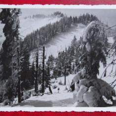 Carte postala - Harghita 1801 m - fotofilms Kolzsvar