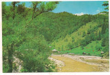 #carte postala(ilustrata)-VALCEA-BREZOI-Valea Lotrului