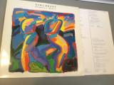 PAUL BRADY - PRIMITIVE DANCE (1987 /MERCURY REC/HOLLAND) -  VINIL/PICK-UP/VINYL, universal records