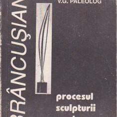 V. G. PALEOLOG - PROCESUL SCULPTURII MODERNE ( ESEURI ) - Carte sculptura