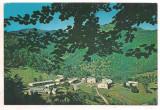 #carte postala(ilustrata)-VALCEA-Valea Lotrului