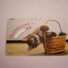 BRCTf - CARTELA TELEFONICA - TEMATICA PISICI