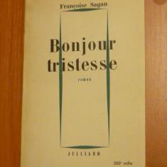 Frencoise Sagan - Bonjour tristesse - 180 pag - lb. franceza - 2+1 gratis toate produsele la pret fix - RBK6792 - Carte in franceza